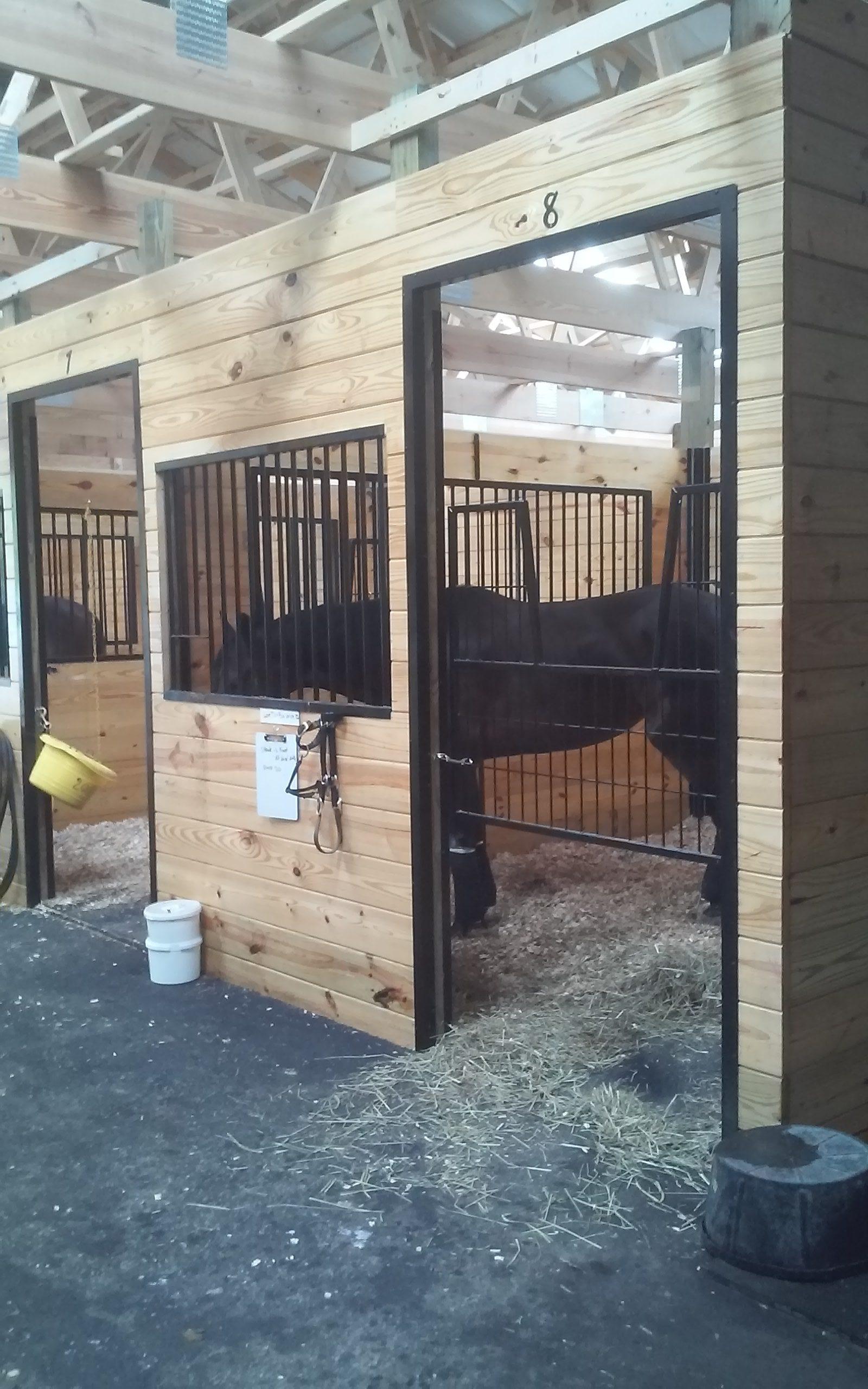 Standard Stalls with Dark Horses
